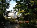 Zürich - Alter Botanischer Garten IMG 0820.jpg