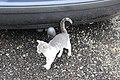 Zemianske Podhradie, mazlící se kotě (4).jpg
