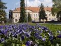 Zgrada Opštine.tif