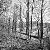 zicht vanaf het hellingbos in het processiepark over de eijserbeek met rechts het klooster - simpelveld - 20329800 - rce