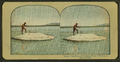 """Larry"" Catching and Cooking Trout, Yellowstone National Park, from Robert N. Dennis collection of stereoscopic views 2.png"