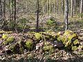 Ķurbes kapu akmens žoga krāvums, Dundagas pagasts, Dundagas novads, Latvia - panoramio.jpg