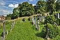 Židovský hřbitov, Boskovice, okres Blansko (02).jpg