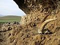 Ак Кая - Белая скала, Грот неандертальцев 3.jpg