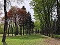 Быханов сад в начале мая.jpg