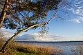 Біле озеро 06.jpg