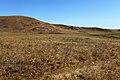 Вид в северо-восточном направлении - panoramio (6).jpg