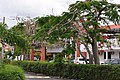 Доминиканская Республика - panoramio (12).jpg