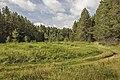 Дорога на Заячью поляну MG 9297.jpg