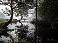 Заштићени природни предио Плива 1.jpg