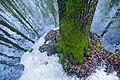 Начало весны в Лосином Острове.jpg