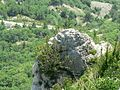 На перевале Ласпи - panoramio.jpg