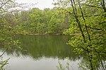 Озеро у Шарівському парку.jpg