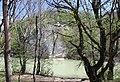 Скала Петушок (скала Спасения) - panoramio (2).jpg