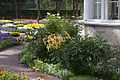 Собственный садик - panoramio (20).jpg