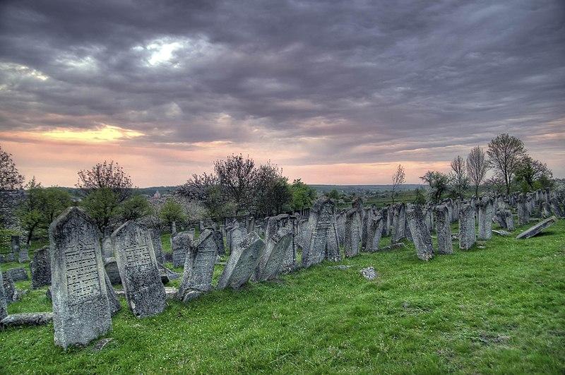 File:Старе єврейське кладовище (окописко) в Підгайцях, тернопільської області, одне з найбільших в Україні.jpg
