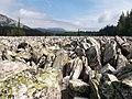 Таганай - Большая каменная река - panoramio (6).jpg