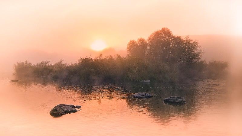 «Туманний світанок». Самчинецьке урочище, Немирівський район. Автор фото — Q-lieb-in, ліцензія CC-BY-SA-4.0