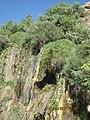 آبشار روستای دره رزگه از توابع بخش گوهرنک در استان چهارمحال و بختیاری - panoramio.jpg