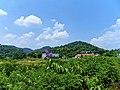 三门江国家森林公园 - panoramio.jpg