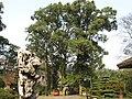 南山植物园-风景1 - panoramio.jpg
