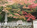 大井のお母さん寺の紅葉風景, Landscape of colored leaves in the Omi no Momiji Temple 3.jpg