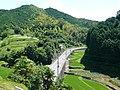大淀町岩壺にて Iwatsubo 2011.7.10 - panoramio.jpg