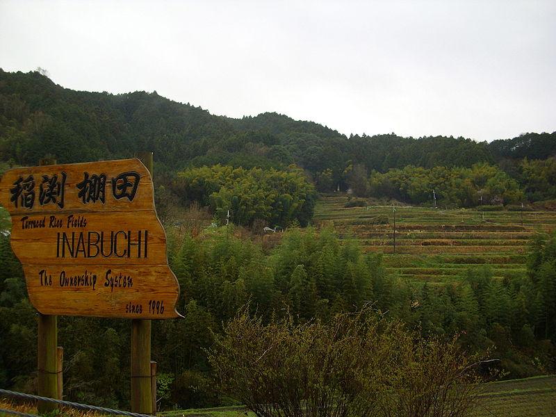 稲渕集落の棚田