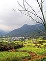 婺源映像(Wuyuan)-5 - panoramio.jpg