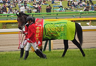 Indy Champ Japanese Thoroughbred racehorse