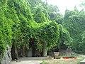 杭州. 登凤凰山-将台山(圣果寺遗址) - panoramio (6).jpg