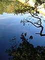 溜め池の水面に映る風景 - Reflection in the pond - panoramio.jpg