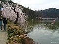 竜ヶ池 - panoramio (1).jpg
