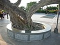 芝山嚴古蹟(士林區) - panoramio - Tianmu peter (69).jpg