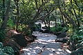 駒沢オリンピック公園 - panoramio (1).jpg