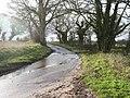 -2021-01-04 Bend in Corner Common Road, Honing, Norfolk.jpg
