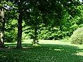 ..nice camping spot - panoramio.jpg