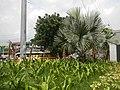 02354jfBalintawak Interchange Caloocan Quezon City FootbrindgeEDSA Roadfvf 01.jpg