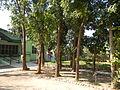 06057jfBarangay Tuyo Upper Rosario Seminary Balanga City Bataanfvf 05.JPG