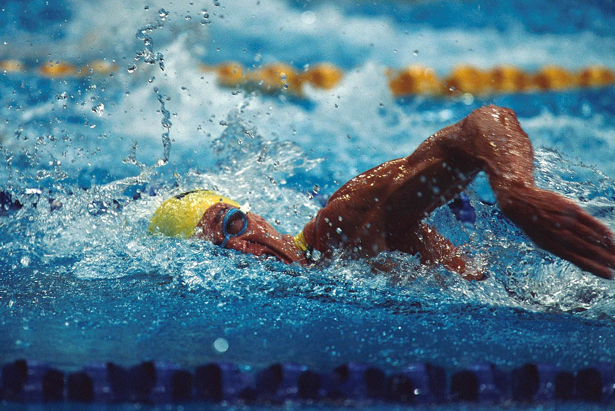 Swimming Pool Action : Jeff hardy swimmer wikipedia