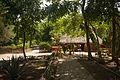 15-07-14-Edzna-Campeche-Mexico-RalfR-WMA 0601.jpg