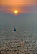 15-Sun and Sail.jpg