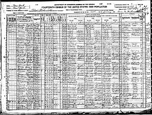 Alfred Næss - Image: 1900 census Naess
