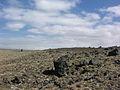 2006-05-23 13-32-03 Iceland - Þykkvabæjarklaustur.jpg