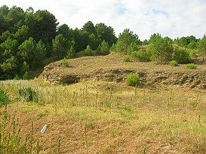 2007 08 07 Gorliz Astondo dunas petrificadas.jpg