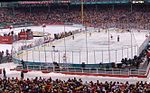 2010 NHL Winter Classic (4241929459) (cropped).jpg