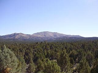 Pinyon-juniper woodland