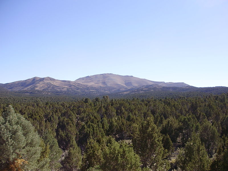 File:2012-10-18 P1010312 View south towards Big Bald Mountain from White Pine County Route 6 ascending Overland Pass from the east.JPG
