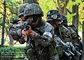2012.10.29 호국훈련 Rep.of Korea Army Hokuk Exercise (8137451625).jpg