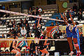 20130330 - Vannes Volley-Ball - Terville Florange Olympique Club - 036.jpg